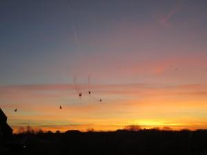 Sunrise 25/01/16